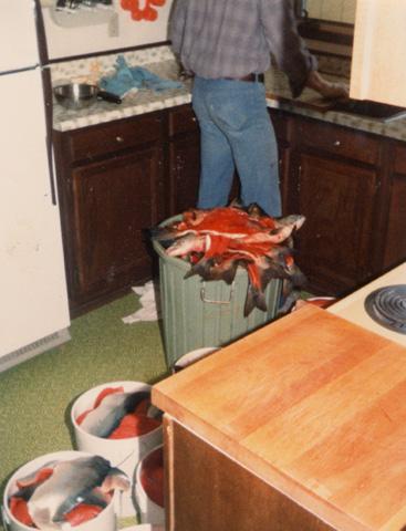 Buckets of salmon fillets