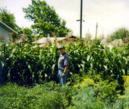 Grandpa and his garden